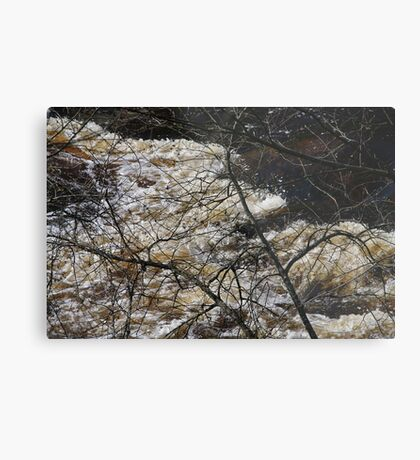 My wild old river Metal Print