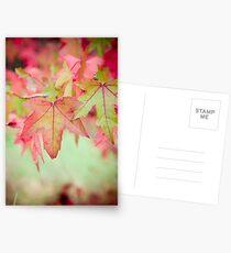 Autumn Leaves II Postcards