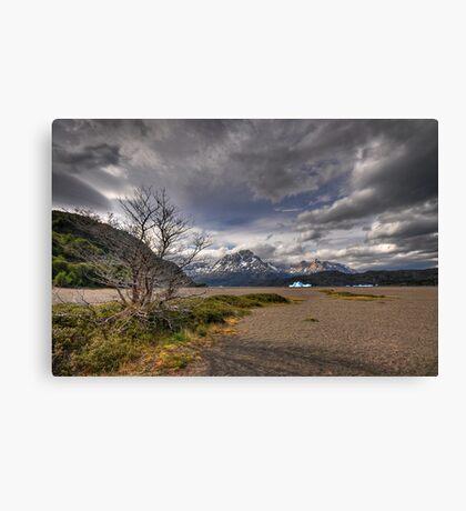 The Shore of Lago Grey Canvas Print