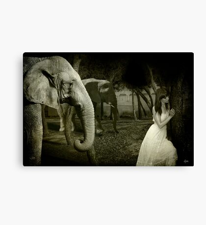 Friends Come In All Forms Canvas Print
