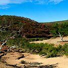 Little Water - Ross Graham Gorge - Kalbarri by John Pitman