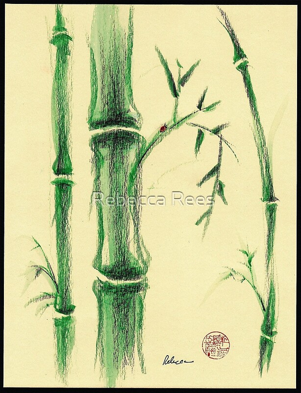 Happiness zen bamboo prisma pencil and watercolor drawing by rebecca rees