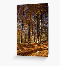 Grass Woods, Yorkshire Dales Greeting Card