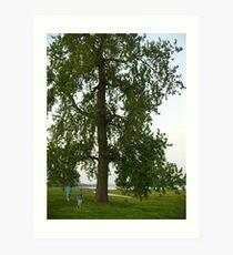Boys by a Big Tree Art Print