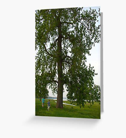 Boys by a Big Tree Greeting Card