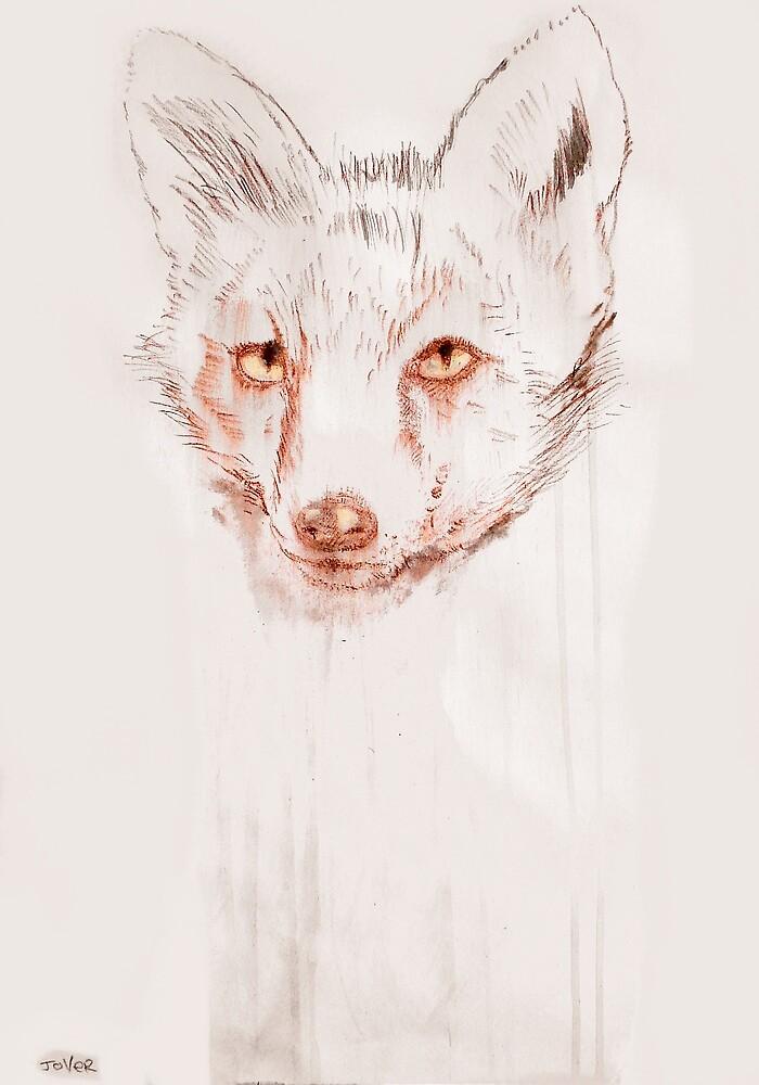 a portrait of extinction by Loui  Jover