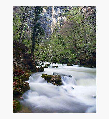 Cotton River Photographic Print