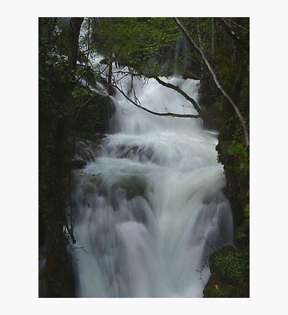 Free Fall Photographic Print