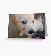 Casper cute! Greeting Card