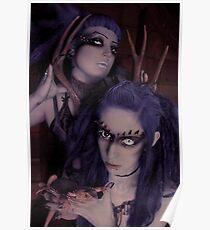Lavender & Lizards Poster