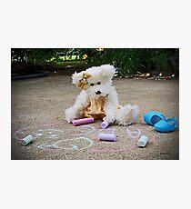 Winnie Surveys Her Chalk Drawings Photographic Print
