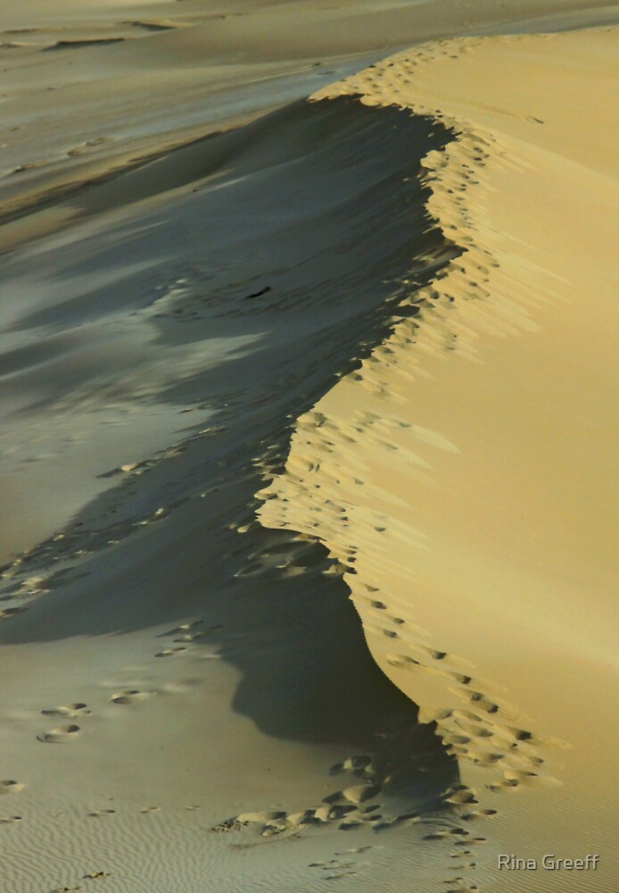 Footprints on a dune by Rina Greeff