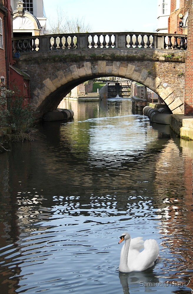 Newbury Bridge by Samantha Higgs