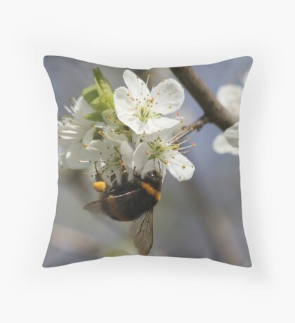 Bee In Spring Throw Pillow