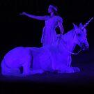 A Night With A Unicorn by kfurniz