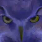 Mr Angry Eyes by John Ryan