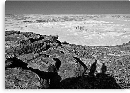 A few hundred million years contemplating twenty seven centuries... by Hélène David-Cuny