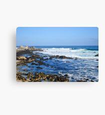 Beach Crumbs Canvas Print