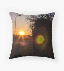 Roadwarmer Throw Pillow