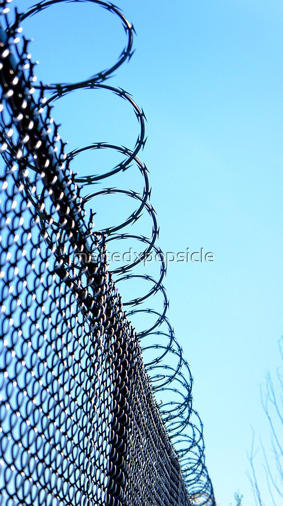 Barbed Wire by Jessica Liatys