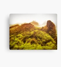 Silk Piling Road Canvas Print