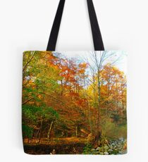 What awaits on the other side Tote Bag