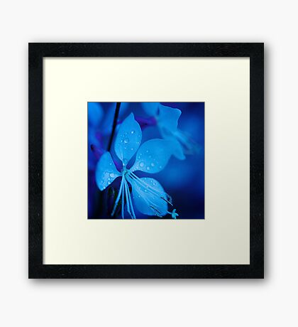 Mom and her little one matching Blue Beauty QTees Framed Print