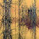Birches ! by Elfriede Fulda