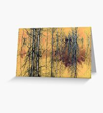 Birches ! Greeting Card