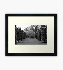 Turo Park View Framed Print