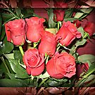 Beautiful Red Roses by EdsMum