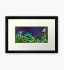 Small world Framed Print