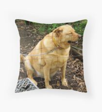 Oh MAN, I Should NOT Have Eaten Those Last 40 Hotdogs! Throw Pillow