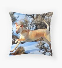 Lab Shar Pei Throw Pillow