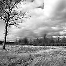 Passing Storm Clouds Irwin Prairie State Nature Preserve by MLabuda