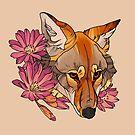 Coyote by Amanda Zito
