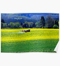 Yellow Harvest Poster