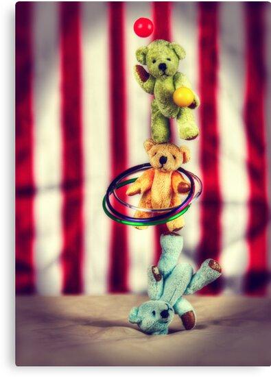 Those Talented Teddies! by Tam  Locke