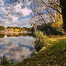 Lake Daylesford by peterperfect