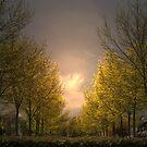 Early morning in Edegem - Belgium by Gilberte