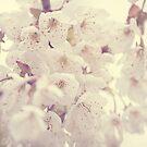 Hazy Blossom by LoveSMP