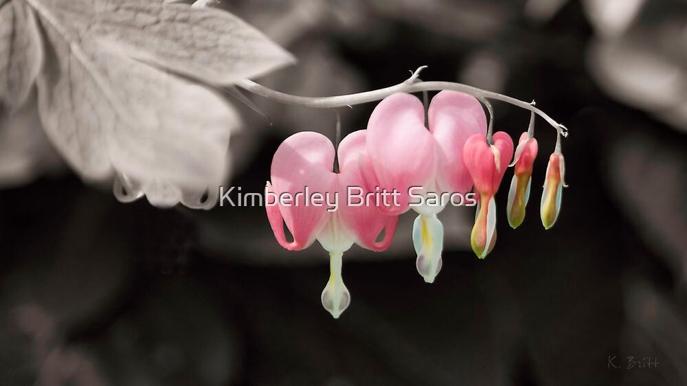 My Bleeding Heart by KBritt