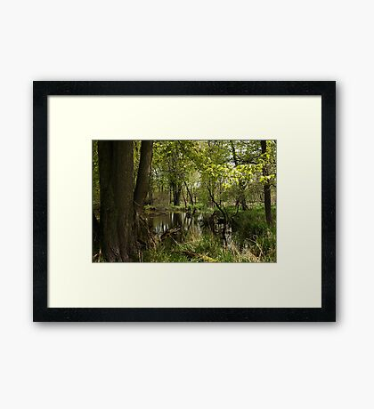 White River Landscape 6748 Framed Print