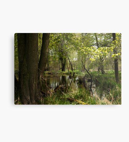 White River Landscape 6748 Metal Print