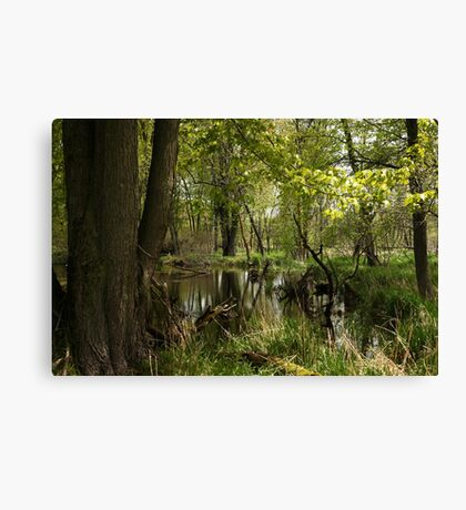 White River Landscape 6748 Canvas Print