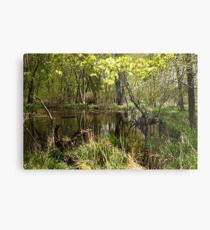 White River Landscape 6749 Metal Print