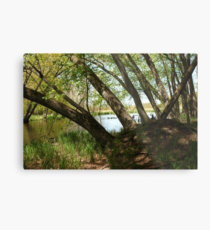 "White River Marsh ""Highlands"" 6778 Metal Print"
