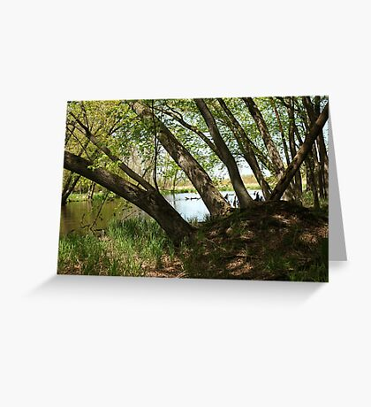 "White River Marsh ""Highlands"" 6778 Greeting Card"
