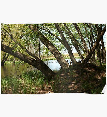 """White River Marsh """"Highlands"""" 6778 Poster"""