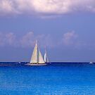 Sail Away by Euge  Sabo